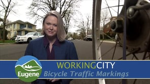 Bicycle Traffic Markings Opens in new window