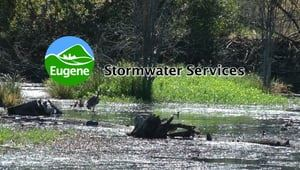 CoE Stormwater Services