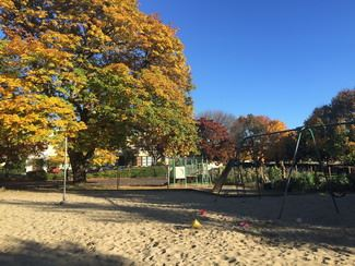 Lincoln School Park in the fall