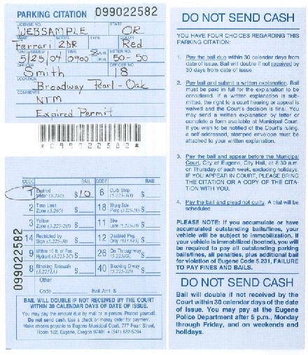 Hand Written Parking Ticket Example