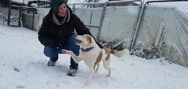 Animal Care Technician playing in snow with dog