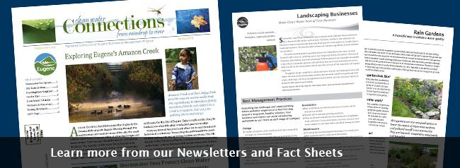 Newsletters and Fact Sheets