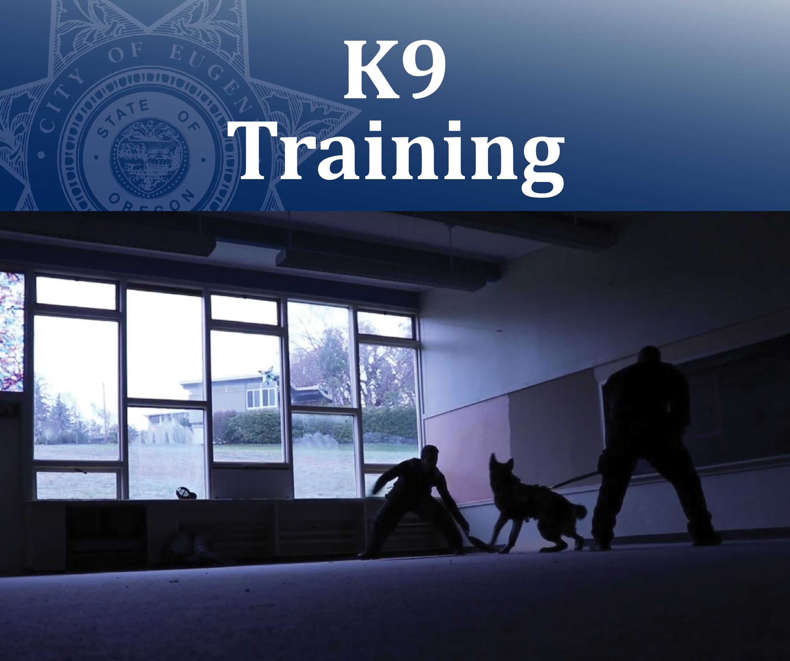 K9 Training Opens in new window