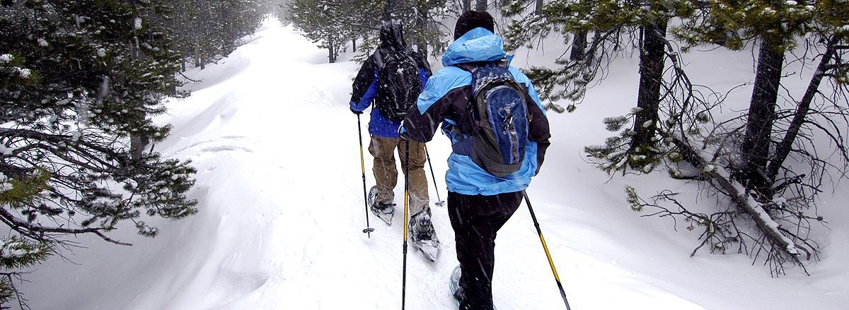 Two snowshoers enjoying a Eugene Rec outing