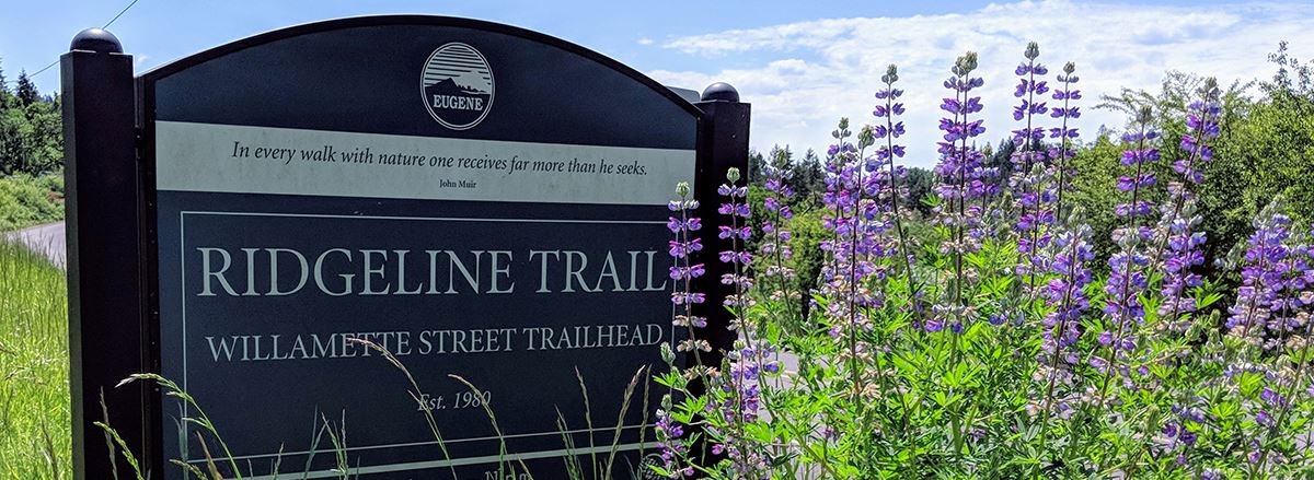Eugene's Ridgeline Trail System offers miles of trail for hikers, runners and bikers