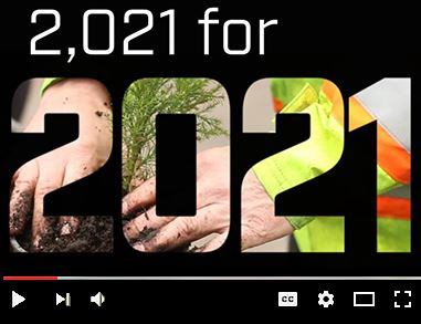 Video on Vimeo about City of Eugene planting 2,021 giant sequoias as a legacy project for 2021 World