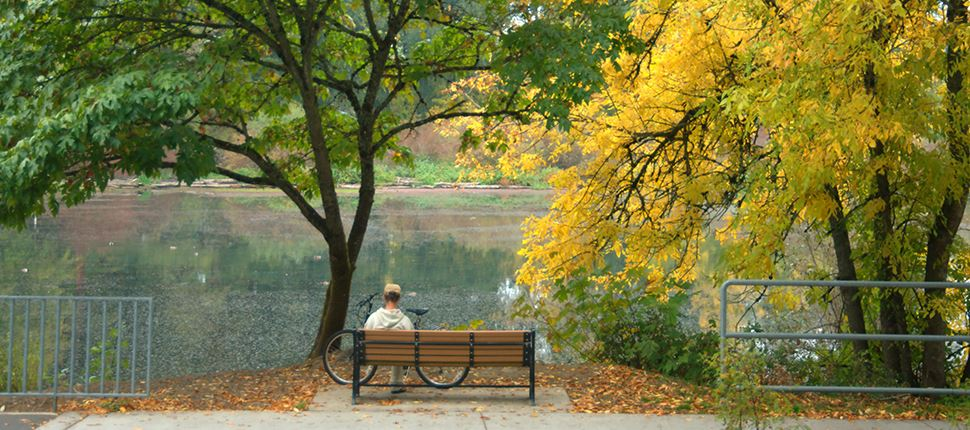 man sitting a bench looking at delta ponds