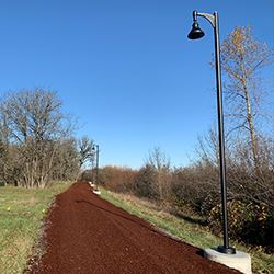 new bark and lighting on the north amazon running trail