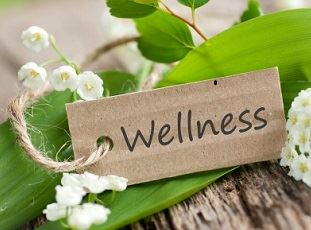 Wellness1 Opens in new window