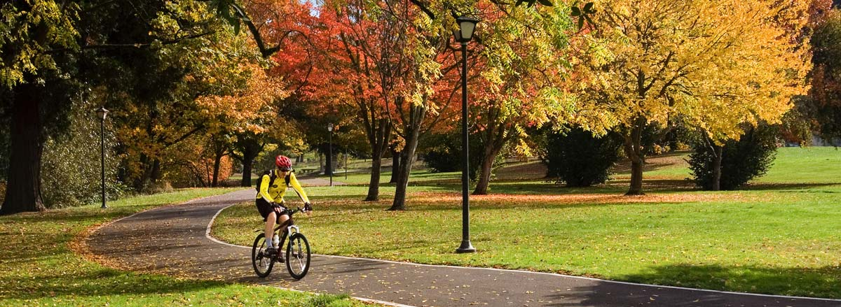 Bicycling through autumn leaves