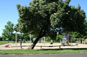 Washington Park play area