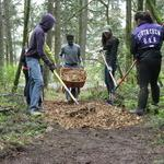 Hendricks Park Forest