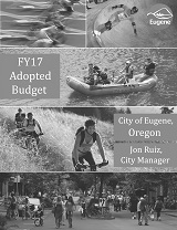 FY17 Adopted Budget