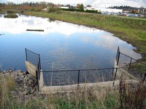 delta ponds gated culvert