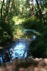 Awbrey Park stream