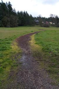 Trail through Hawkins Heights
