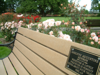 Dedication bench at Owen Rose