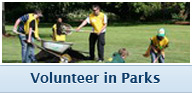 volunteer in parks