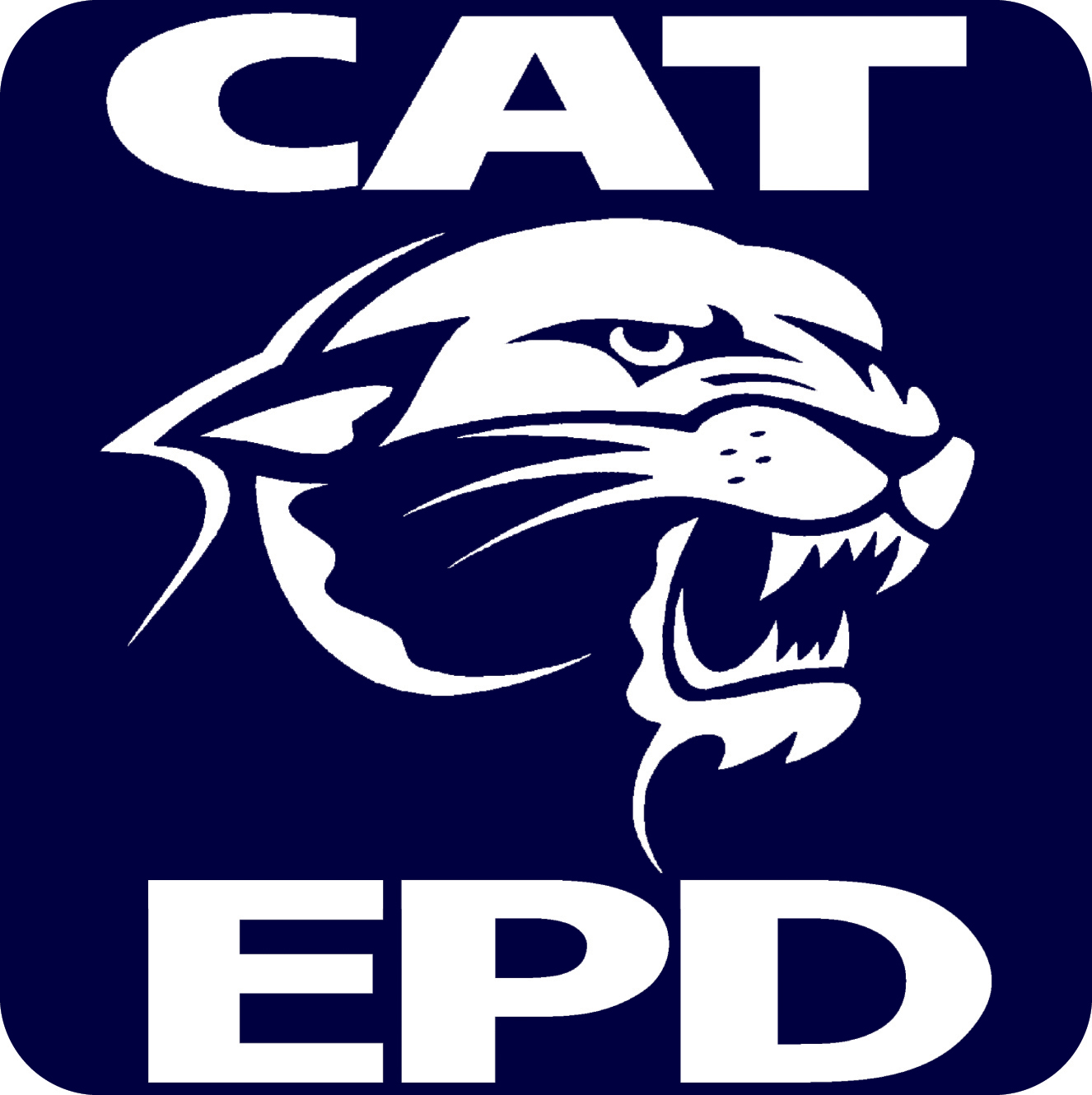 logo of CAT program