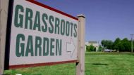 Grassroots Garden - Compost Video