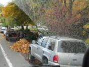 Keep leaves clear of travel and bike lanes.